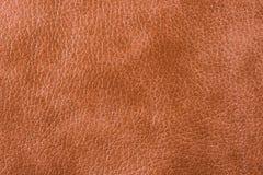 Textura de couro natural Imagens de Stock