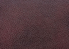 Textura de couro natural Fotografia de Stock