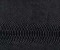 Textura de couro natural do réptil de Brown Pele de serpente Pattern fotos de stock royalty free