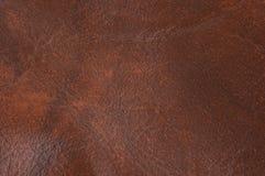 Textura de couro para fundos imagem de stock