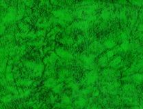 Textura de couro verde Fotos de Stock