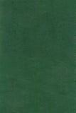 Textura de couro verde do QG Imagem de Stock