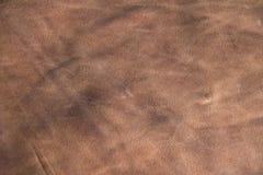 Textura de cuero Imágenes de archivo libres de regalías