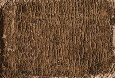 Textura de cuero de Brown Fotografía de archivo