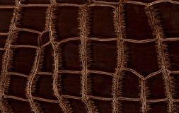 Textura de cuero del cocodrilo Imagen de archivo