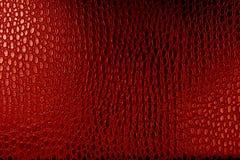 Textura de cuero del cocodrilo Fotografía de archivo