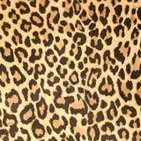 Textura de cuero del modelo del leopardo imagenes de archivo