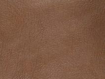 Textura de cuero marrón natural, real Fotografía de archivo