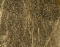 Textura de cuero de oro natural, real Fotos de archivo libres de regalías