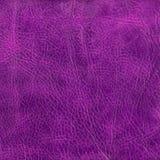 Textura de cuero púrpura al fondo Imágenes de archivo libres de regalías