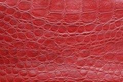 Textura de cuero roja Foto de archivo
