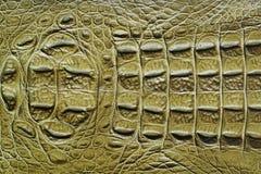 Textura de cuero verde Imagen de archivo libre de regalías