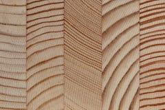 A textura de detalhes colados da madeira de pinho após o feixe transversal Imagem de Stock Royalty Free