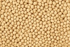 Textura de feijões da soja, fundo da textura do tofu ilustração stock