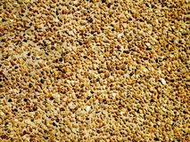 Textura de grano grueso Foto de archivo
