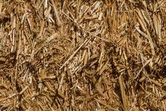 Textura de Hay Straw Imagens de Stock Royalty Free