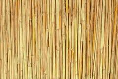 Textura de lámina seca Fotografía de archivo libre de regalías