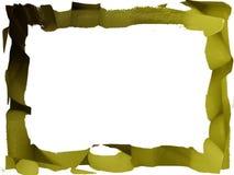 Textura de la aceituna del fondo Imagen de archivo