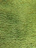 Textura de la alfombra de la hierba verde en hogar Fotografía de archivo libre de regalías