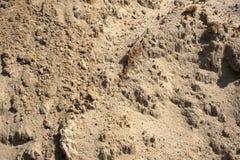 Textura de la arena de la construcción fotografía de archivo libre de regalías