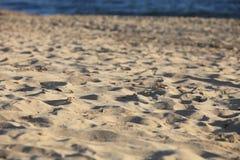 Textura de la arena de la playa Fotografía de archivo libre de regalías