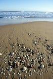 Textura de la arena de la playa con los shelles de la almeja Fotos de archivo
