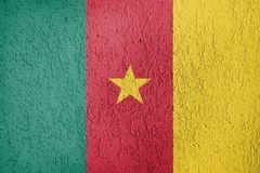Textura de la bandera del Camerún Imagenes de archivo