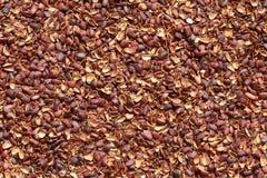 Textura de la cáscara de la nuez de pino, usada como fertilizante del suelo Imagen de archivo