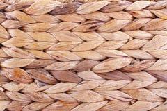 Textura de la caña Foto de archivo