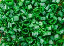 Textura de la cebolla verde del corte, fondo de la naturaleza, vida orgánica sana Foto de archivo libre de regalías