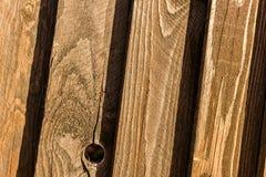Textura de la cerca del pino Foto de archivo libre de regalías