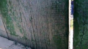 Textura de la cerca de madera pintada vieja almacen de metraje de vídeo
