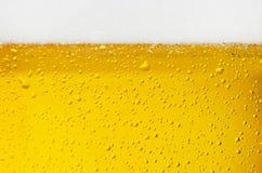 Textura de la cerveza Imagen de archivo libre de regalías