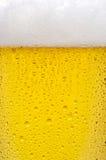 Textura de la cerveza fotos de archivo libres de regalías
