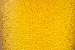 Textura de la cerveza foto de archivo libre de regalías
