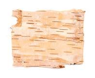 Textura de la corteza de abedul Foto de archivo libre de regalías