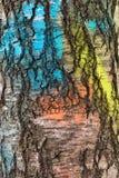 Textura de la corteza de abedul, pintada en diversos colores Imagen de archivo libre de regalías