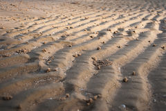 Textura de la curva de la arena Imágenes de archivo libres de regalías