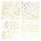 Textura de la desolación Fotografía de archivo