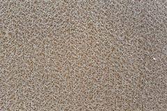 Textura de la esponja de Yellow Sea fotografía de archivo libre de regalías