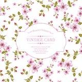 Textura de la flor en tarjeta del vintage. Fotografía de archivo