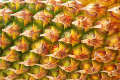 Textura de la fruta de la piña Foto de archivo
