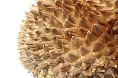 textura de la fruta del durian Foto de archivo libre de regalías