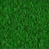 Textura de la hierba Fotografía de archivo