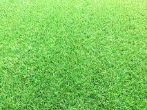 Textura de la hierba o fondo artificial verde y espacio vacío foto de archivo libre de regalías