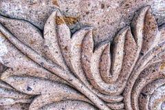 Textura de la hoja del cemento del molde Imagen de archivo libre de regalías
