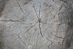 Textura de la madera Foto de archivo