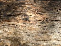 Textura 04 de la madera Imagen de archivo