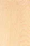 Textura de la madera contrachapada del abedul Foto de archivo