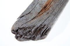 Textura de la madera de deriva Fotografía de archivo